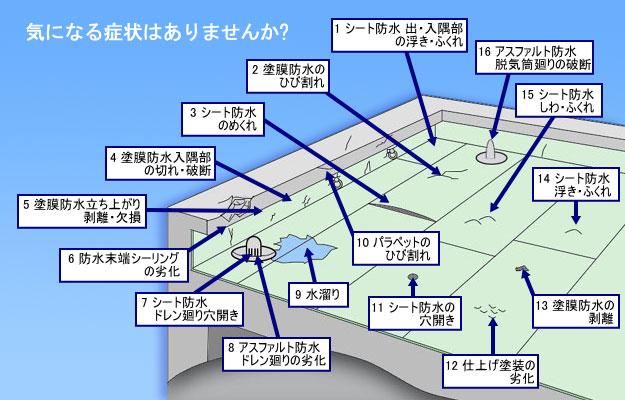 露出防水屋根図5